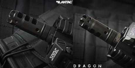 dragon_04a