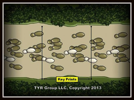 TYR Group Tracking Tip