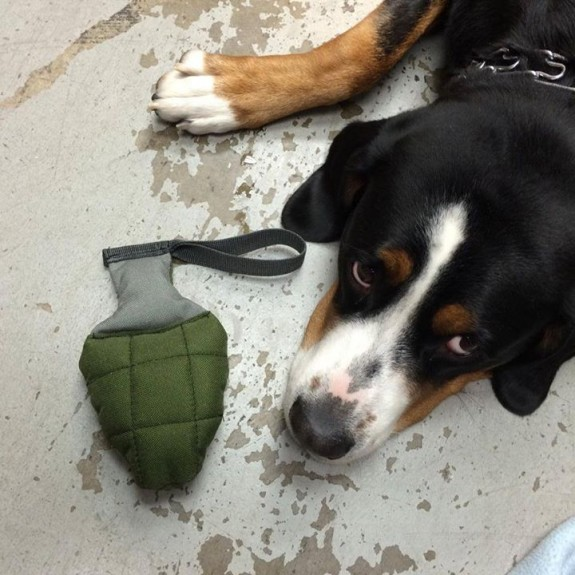 RE Factor Tactical Grenade Dog Toy 2