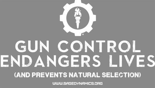 Sage Dynamics Gun Control T