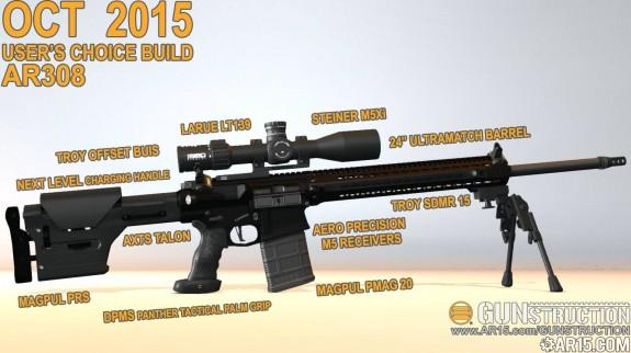 oct gunstruction ar308