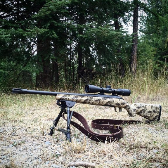 ruger american rifle ranch 556 jtt